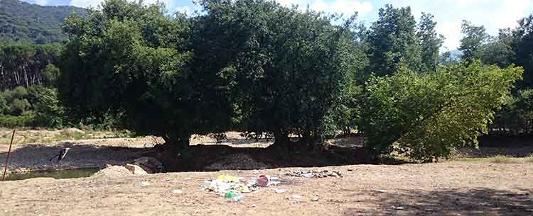 The Bisri River banks are lined with litter | Source: NewsroomNomad