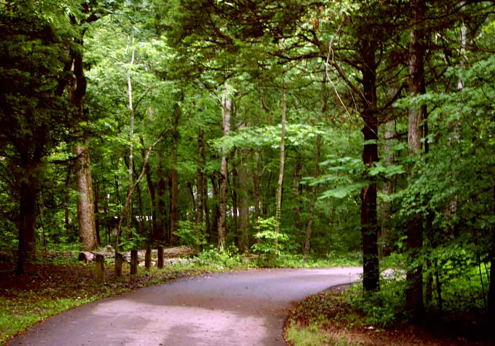 Campground Road - Cedars of Lebanon State Park - Tennessee   Source: Flickr/PaulChenoweth